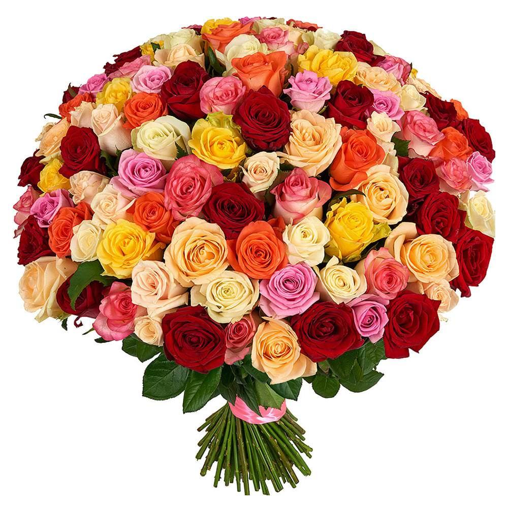 большие открытки с розами его включении